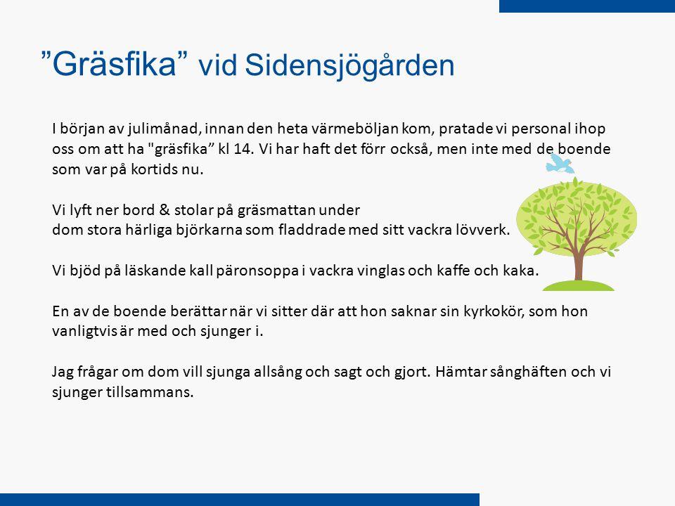 Gräsfika vid Sidensjögården