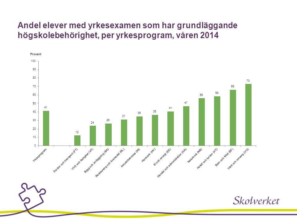 Andel elever med yrkesexamen som har grundläggande högskolebehörighet, per yrkesprogram, våren 2014