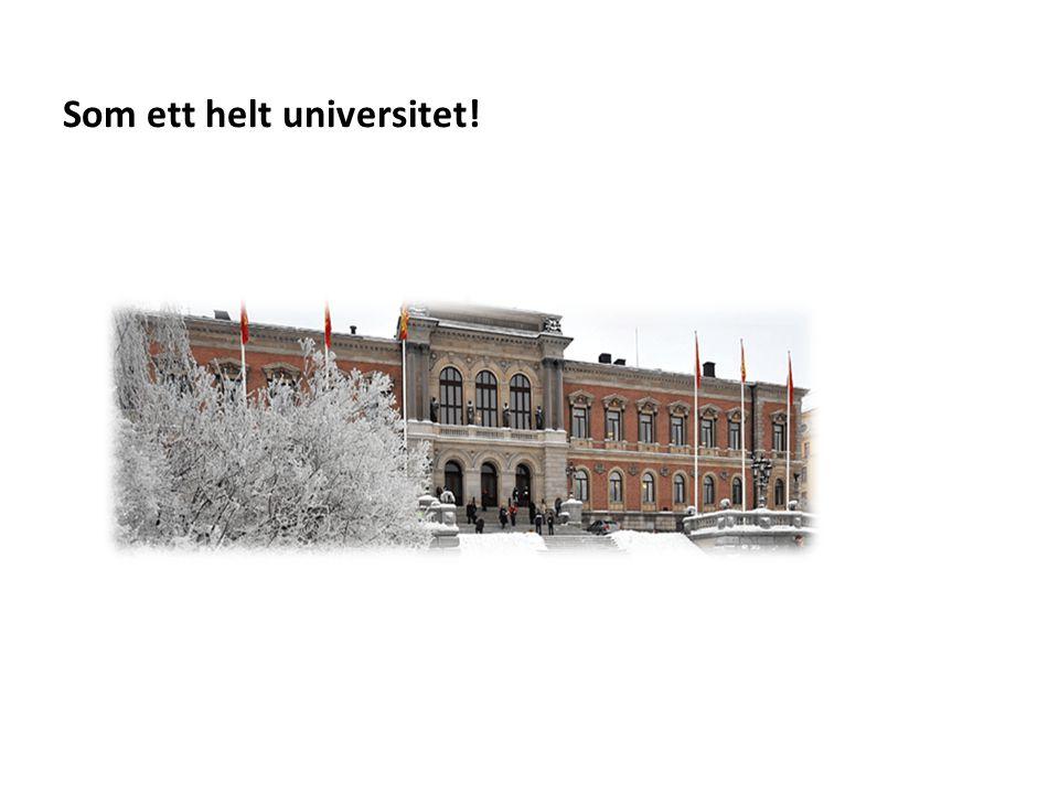 Som ett helt universitet!