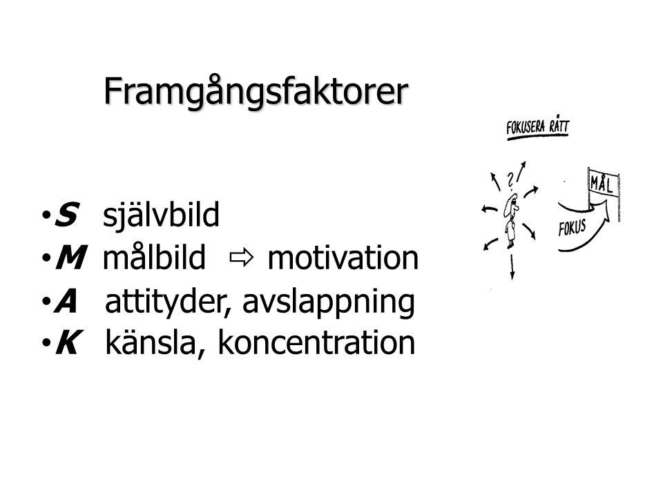Framgångsfaktorer S självbild M målbild  motivation
