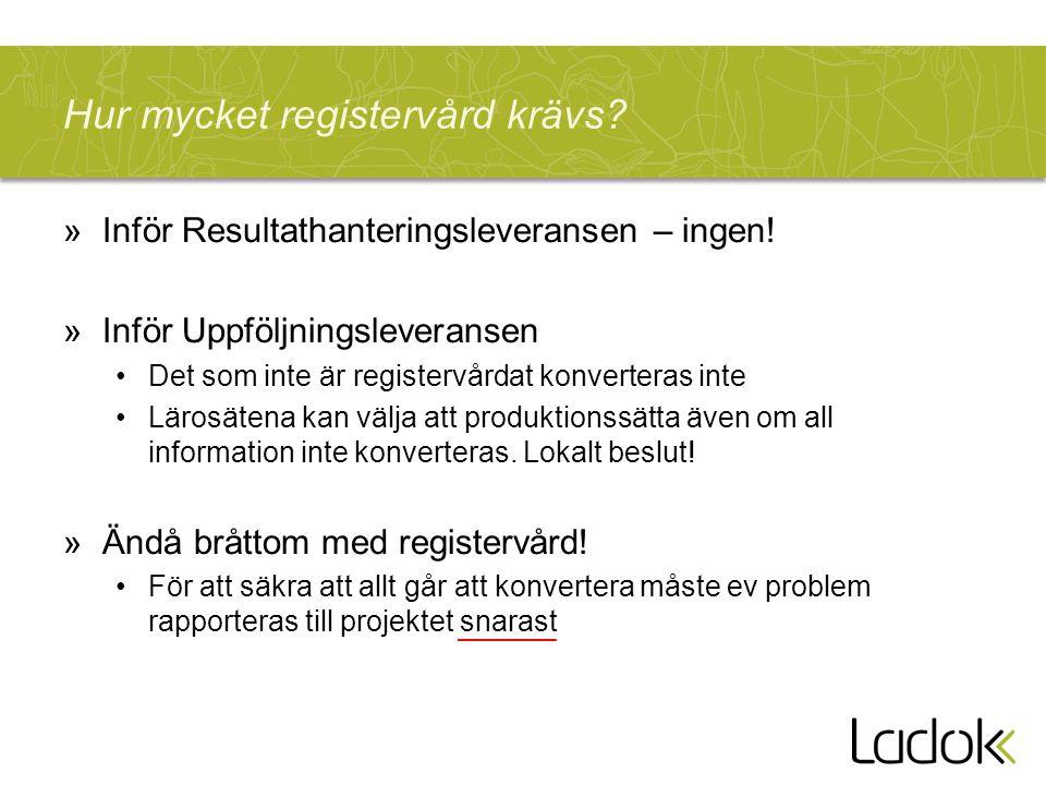 Hur mycket registervård krävs