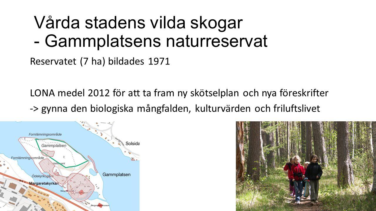 Vårda stadens vilda skogar - Gammplatsens naturreservat
