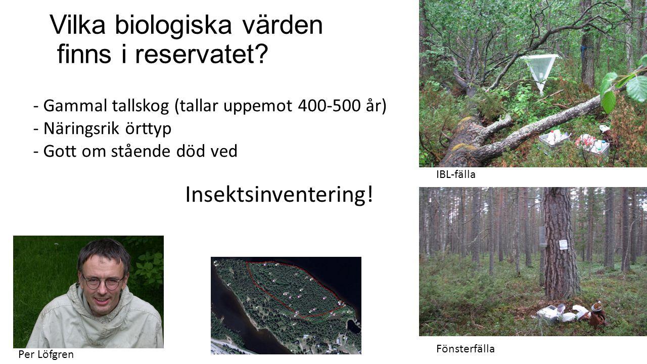 Vilka biologiska värden finns i reservatet