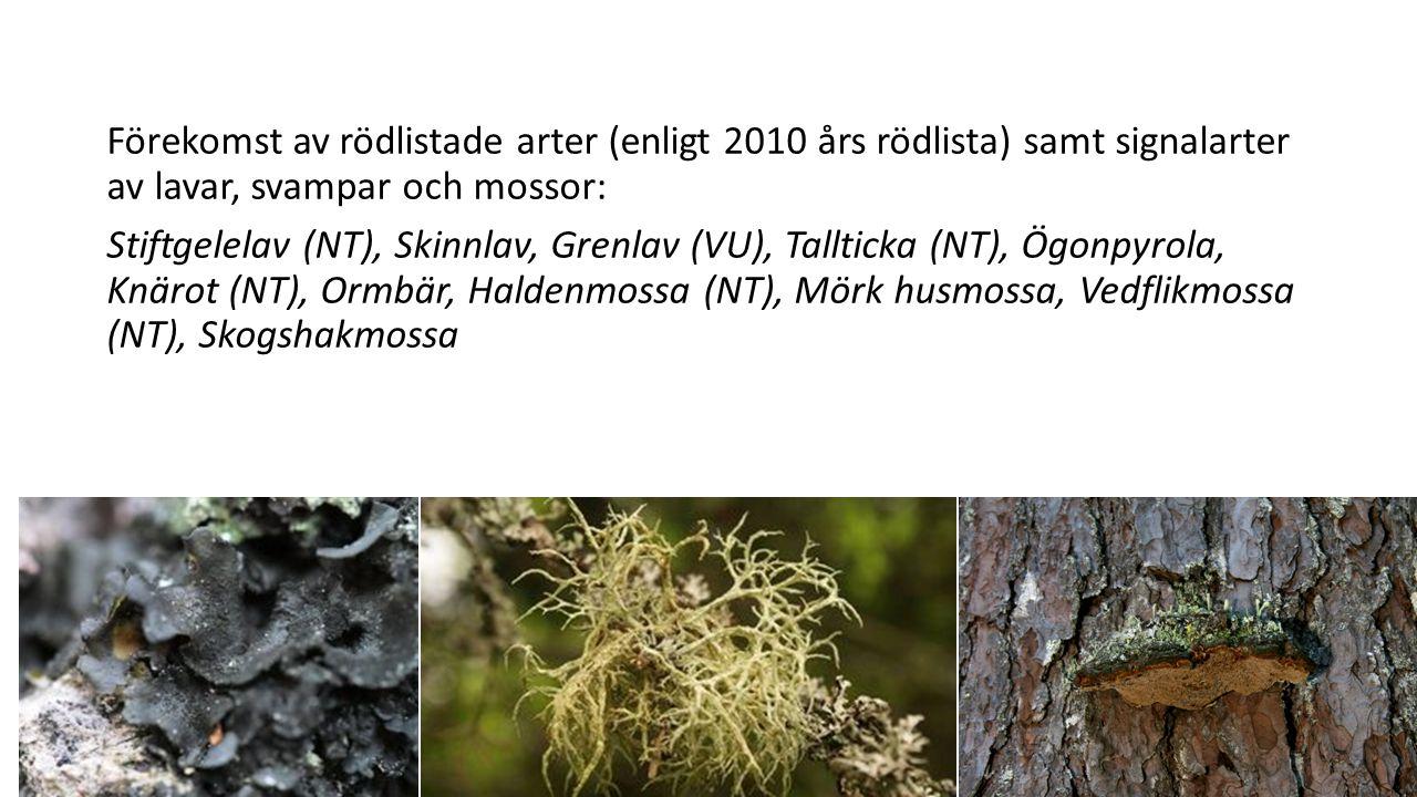 Förekomst av rödlistade arter (enligt 2010 års rödlista) samt signalarter av lavar, svampar och mossor: