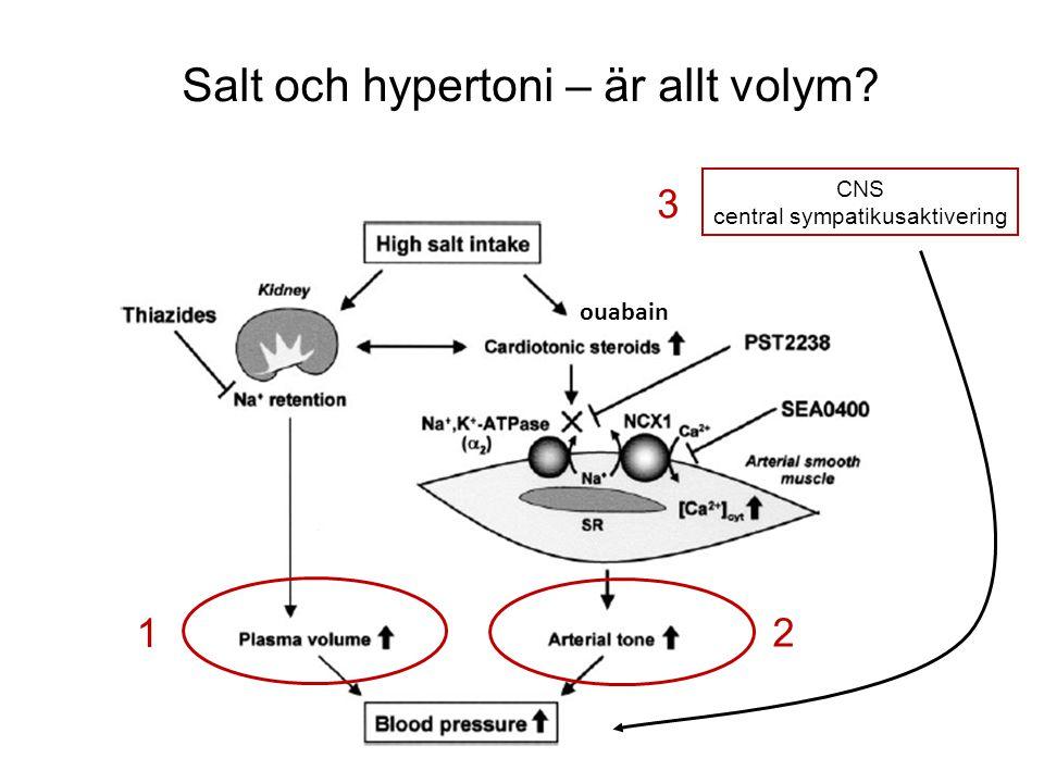 Salt och hypertoni – är allt volym