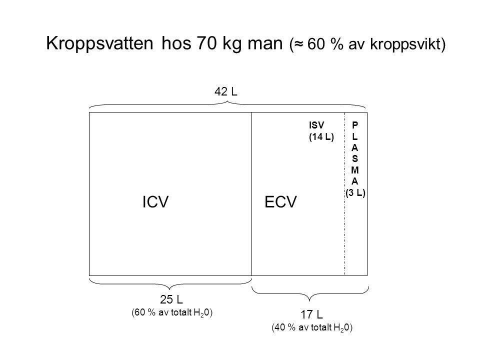 Kroppsvatten hos 70 kg man (≈ 60 % av kroppsvikt)