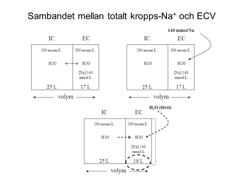 Sambandet mellan totalt kropps-Na+ och ECV