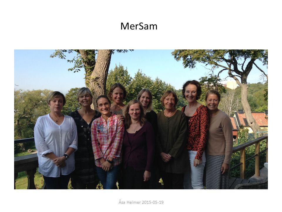 MerSam (Hälso- och sjukvårdslagen
