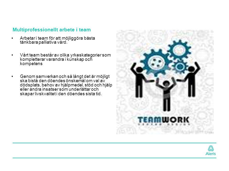 Multiprofessionellt arbete i team