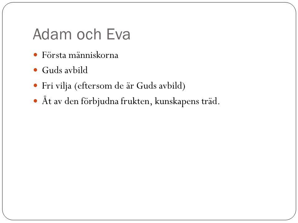 Adam och Eva Första människorna Guds avbild