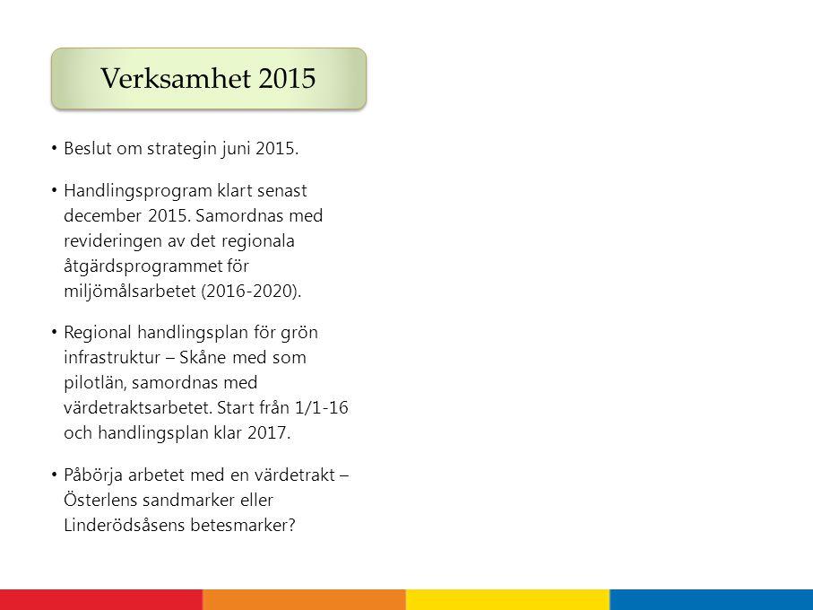 Verksamhet 2015 Beslut om strategin juni 2015.