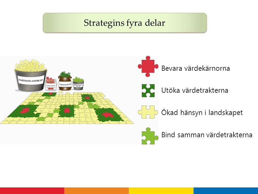 Strategins fyra delar Bevara värdekärnorna Utöka värdetrakterna