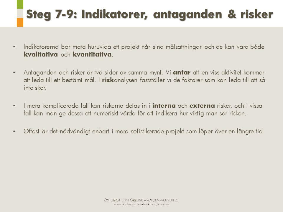 Steg 7-9: Indikatorer, antaganden & risker