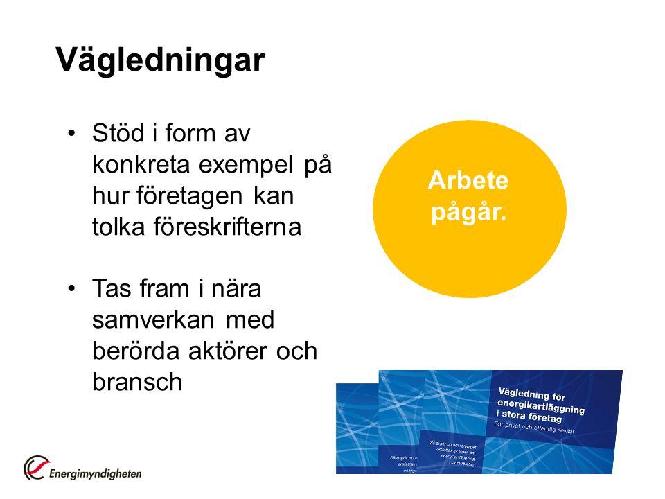 Vägledningar Stöd i form av konkreta exempel på hur företagen kan tolka föreskrifterna. Tas fram i nära samverkan med berörda aktörer och bransch.