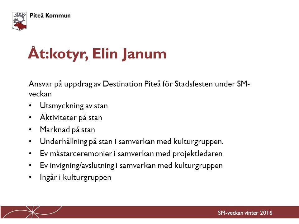 Åt:kotyr, Elin Janum Ansvar på uppdrag av Destination Piteå för Stadsfesten under SM-veckan. Utsmyckning av stan.