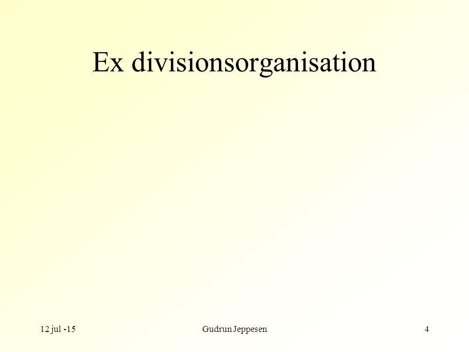 Ex divisionsorganisation