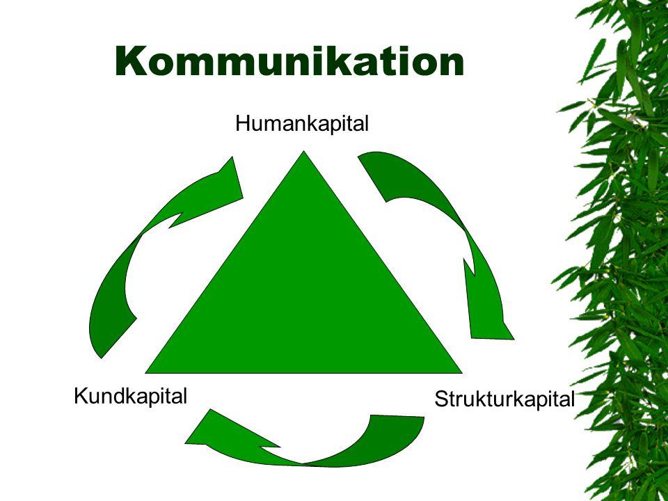 Kommunikation Humankapital Kundkapital Strukturkapital