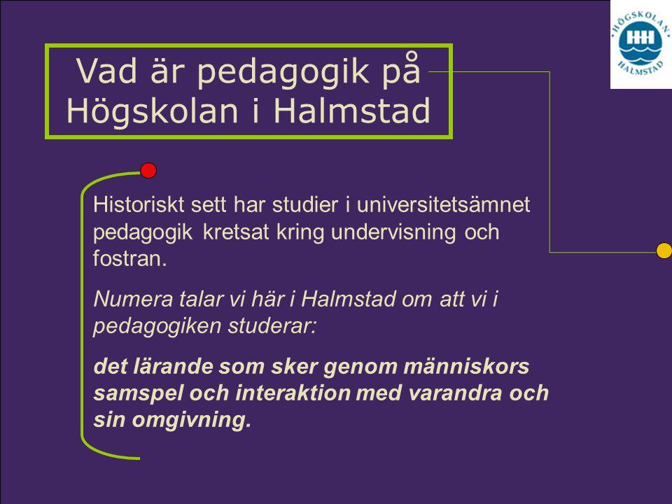 Vad är pedagogik på Högskolan i Halmstad