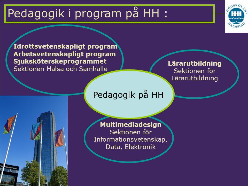 Pedagogik i program på HH :