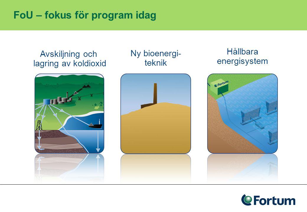 FoU – fokus för program idag