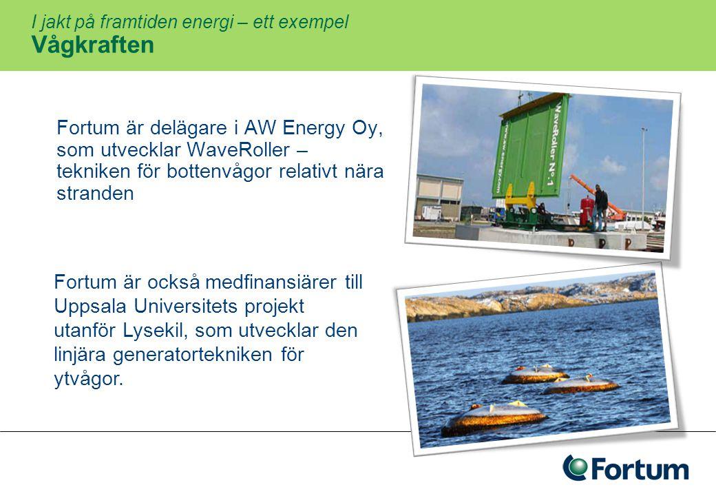 I jakt på framtiden energi – ett exempel Vågkraften
