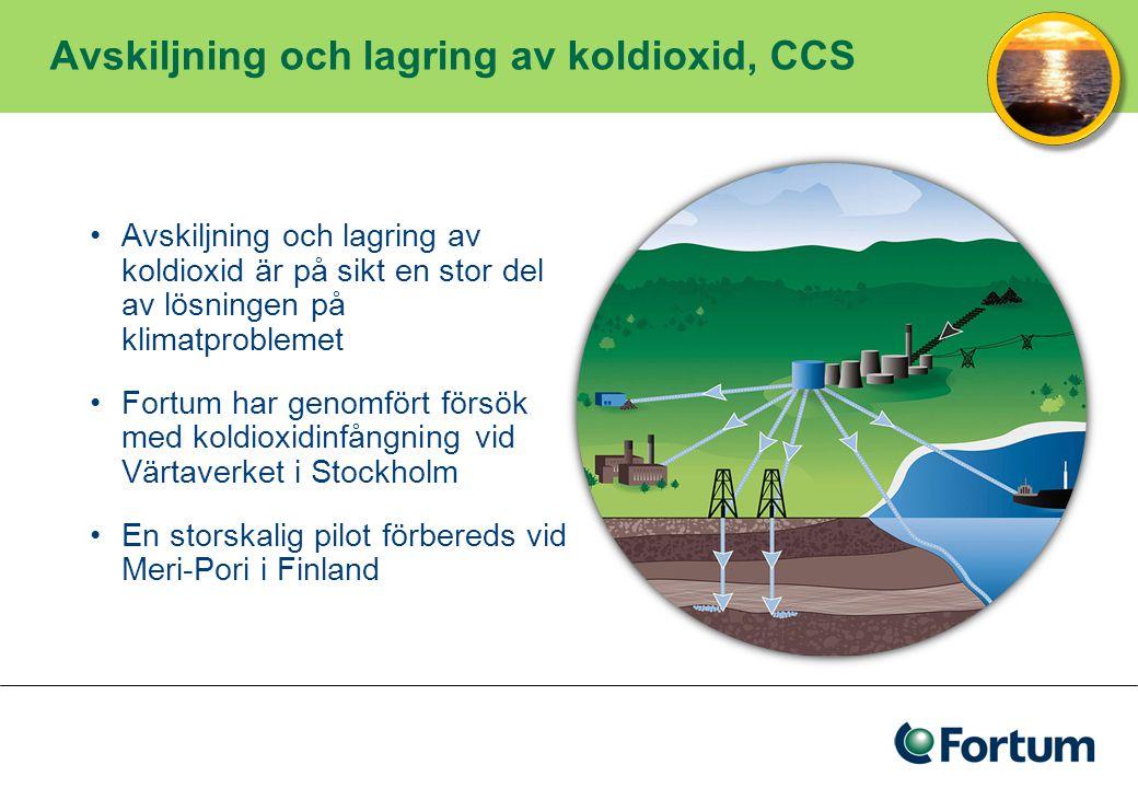 Avskiljning och lagring av koldioxid, CCS