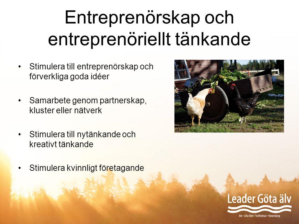 Entreprenörskap och entreprenöriellt tänkande