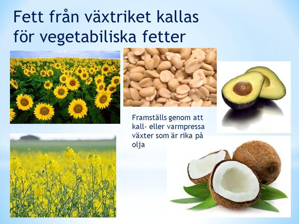 Fett från växtriket kallas för vegetabiliska fetter