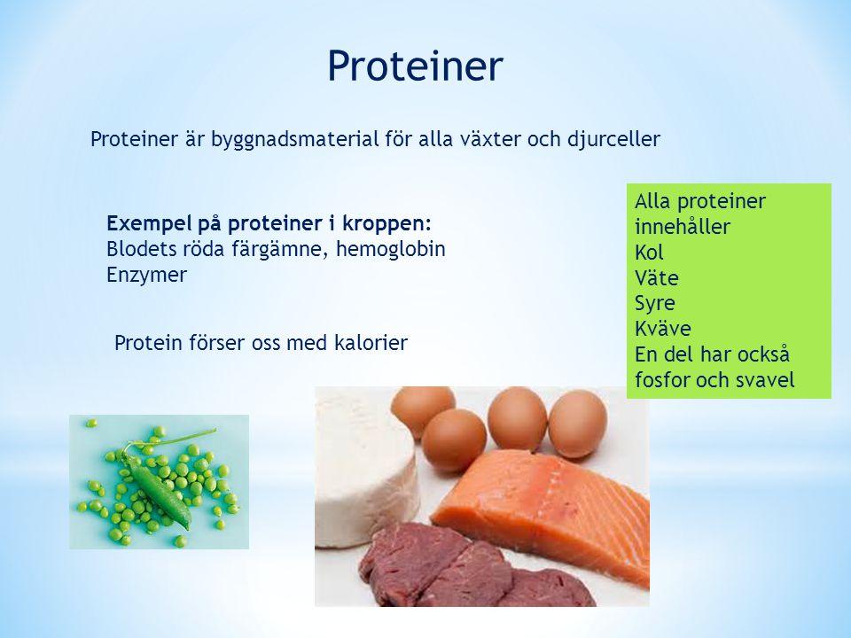 Proteiner Proteiner är byggnadsmaterial för alla växter och djurceller