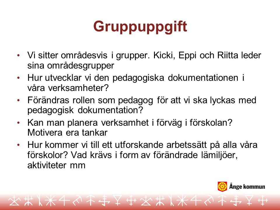 Gruppuppgift Vi sitter områdesvis i grupper. Kicki, Eppi och Riitta leder sina områdesgrupper.