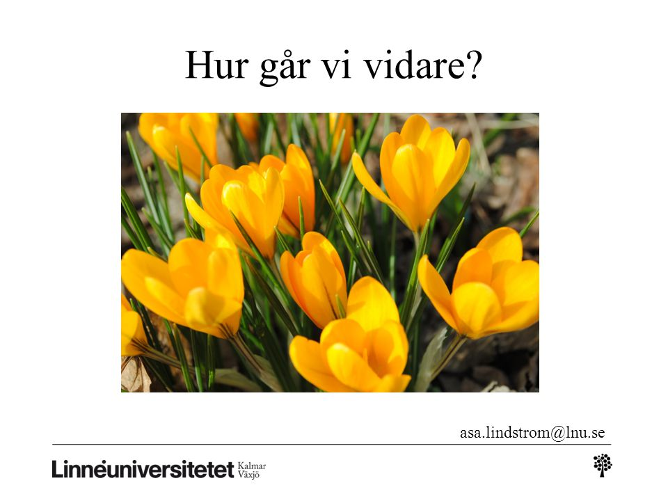 Hur går vi vidare asa.lindstrom@lnu.se