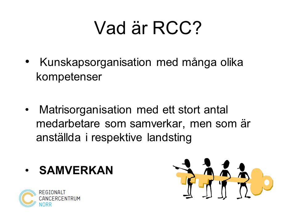 Vad är RCC Kunskapsorganisation med många olika kompetenser
