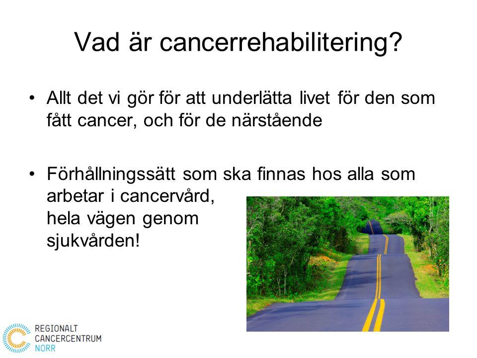 Vad är cancerrehabilitering