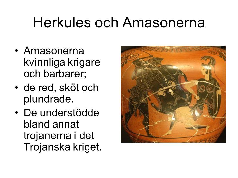 Herkules och Amasonerna