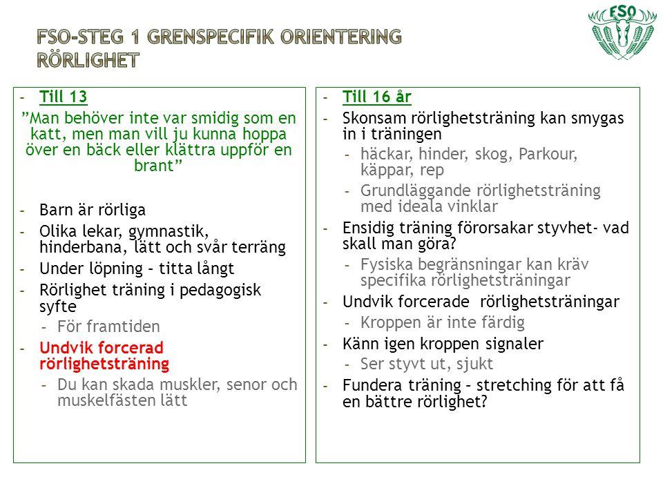 FSO-Steg 1 grenspecifik orientering rörlighet