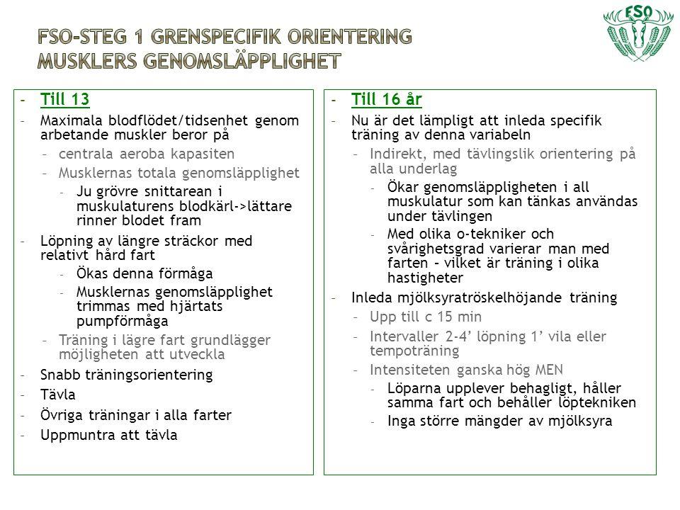 FSO-Steg 1 grenspecifik orientering Musklers genomsläpplighet