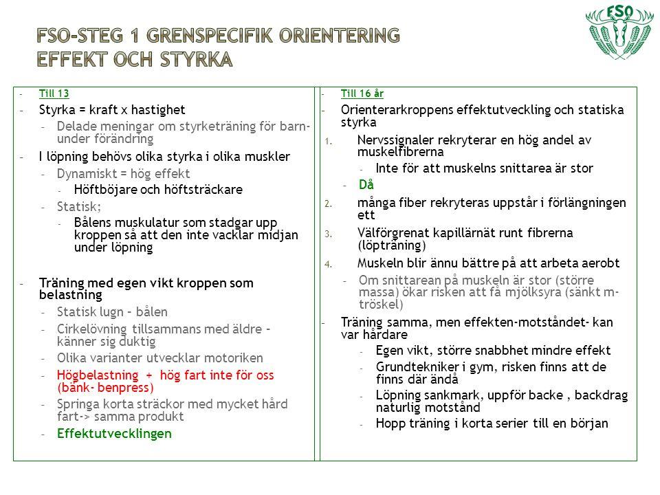 FSO-Steg 1 grenspecifik orientering Effekt och styrka