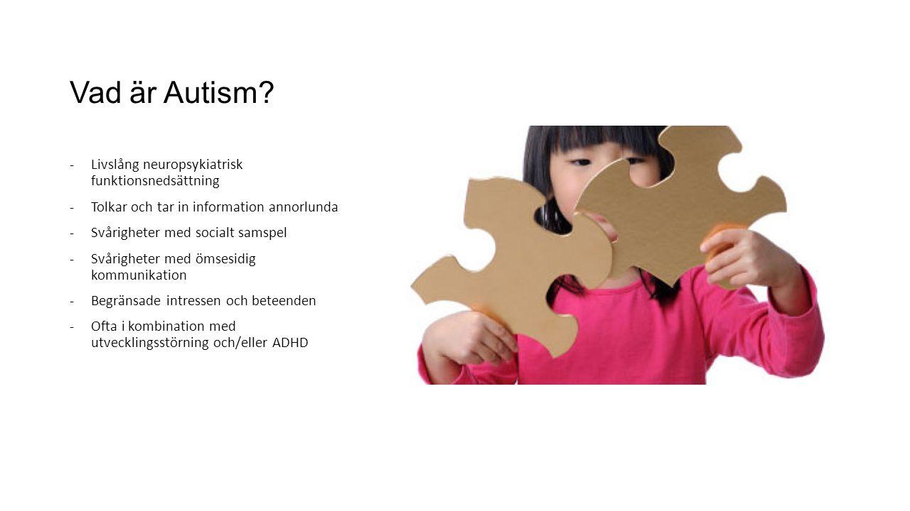 Vad är Autism Livslång neuropsykiatrisk funktionsnedsättning