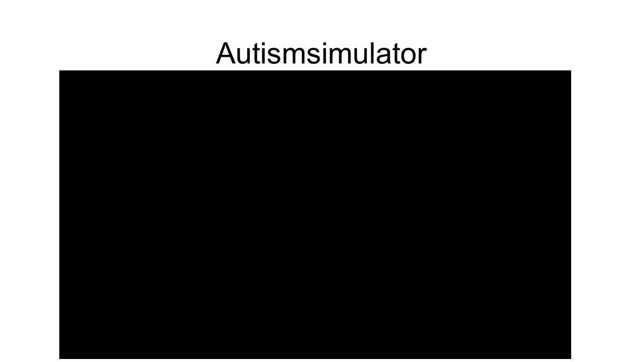 Autismsimulator