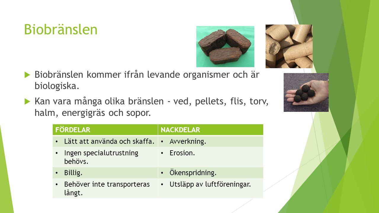 Biobränslen Biobränslen kommer ifrån levande organismer och är biologiska.