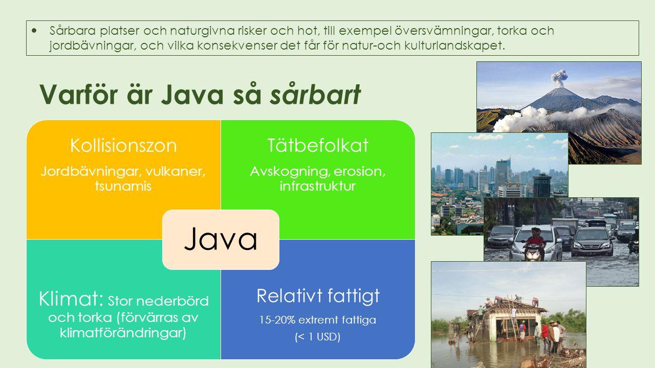 Varför är Java så sårbart