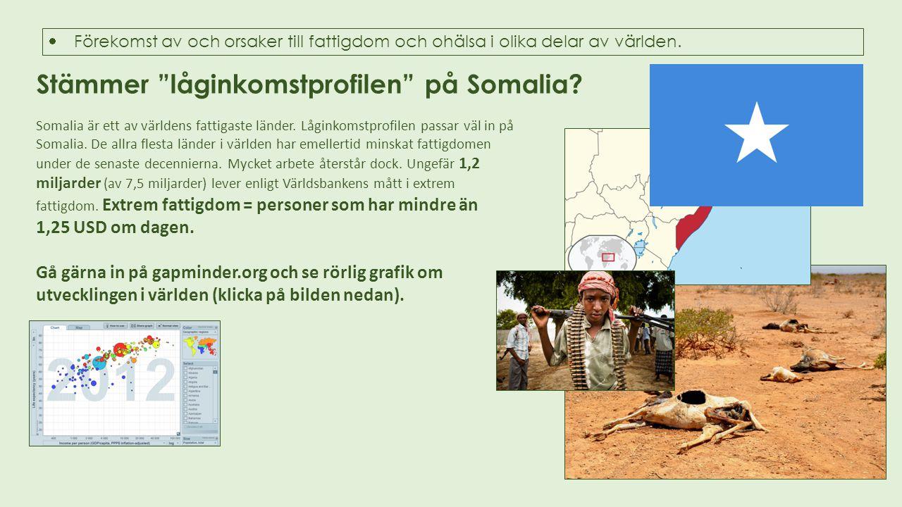 Stämmer låginkomstprofilen på Somalia