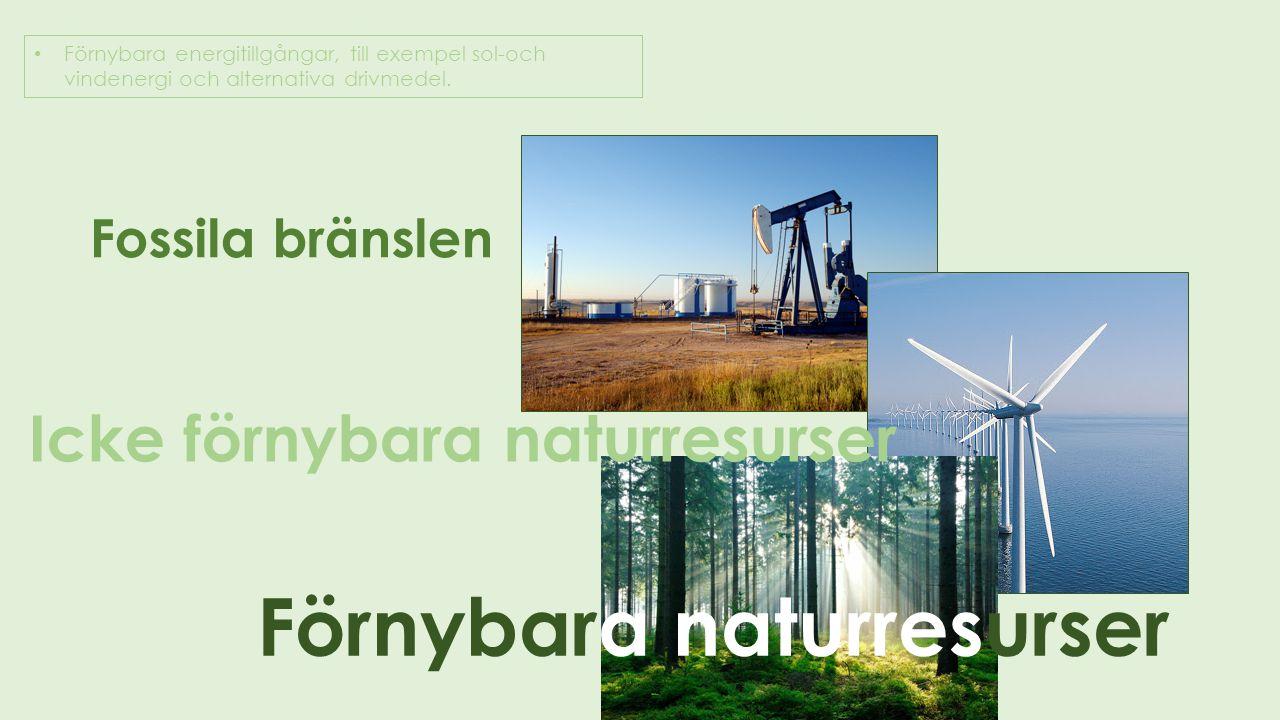 Förnybara naturresurser