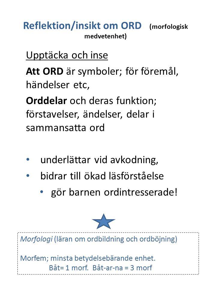 Reflektion/insikt om ORD (morfologisk medvetenhet)