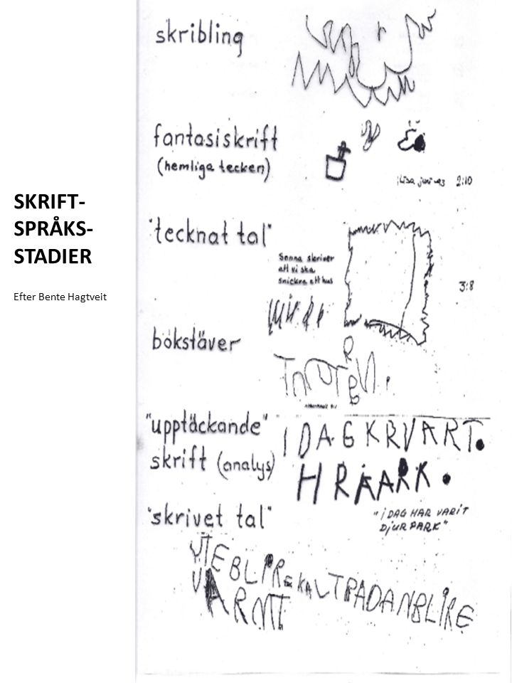 SKRIFT-SPRÅKS-STADIER