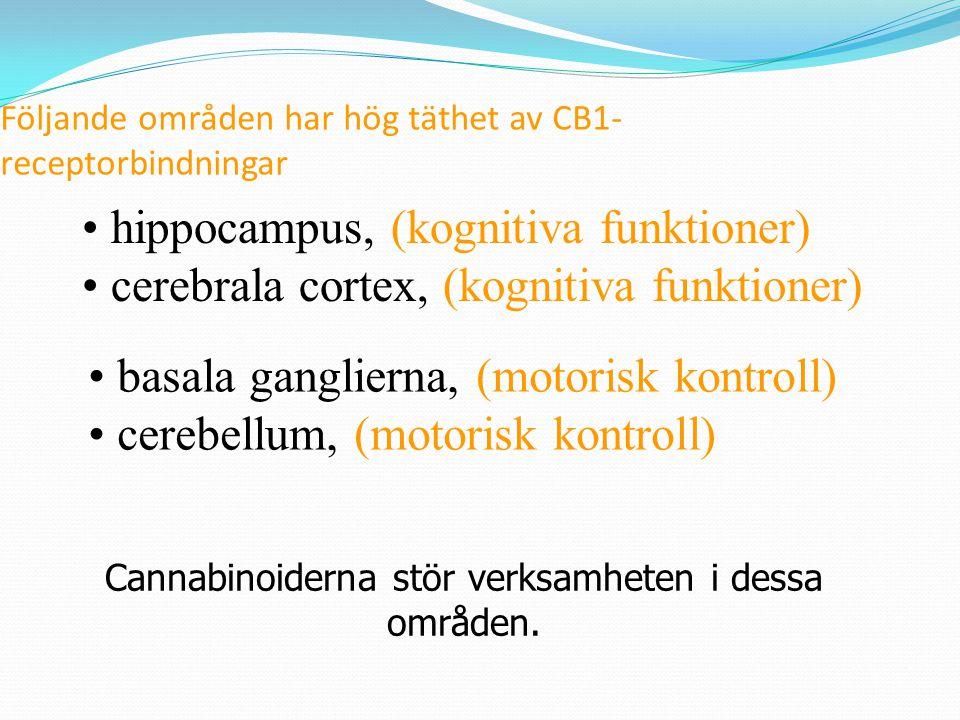 Följande områden har hög täthet av CB1-receptorbindningar