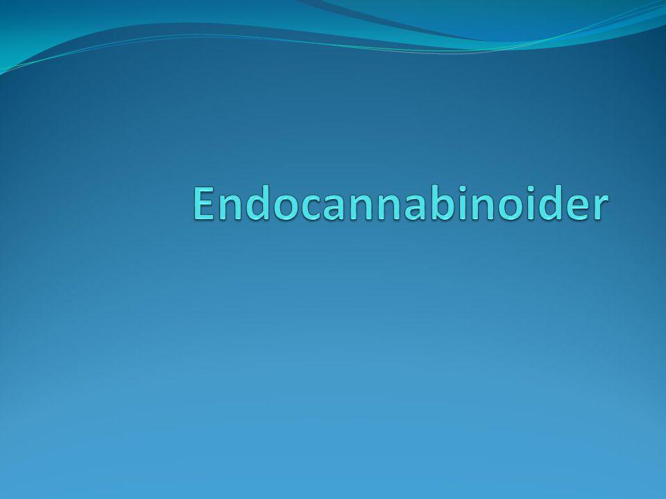 Endocannabinoider