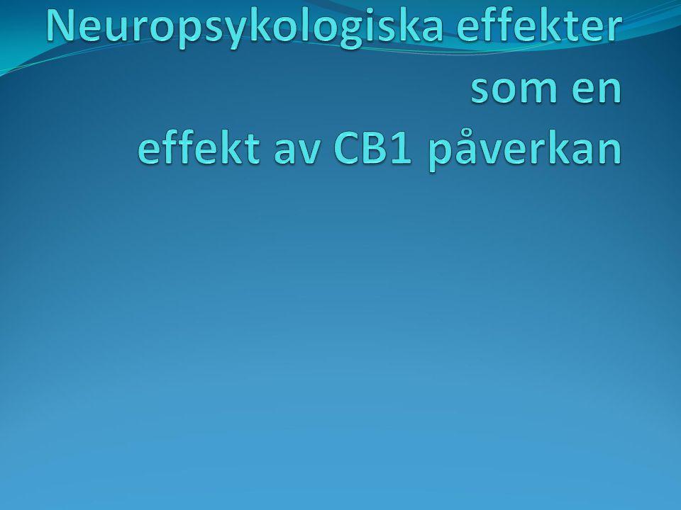 Neuropsykologiska effekter som en effekt av CB1 påverkan