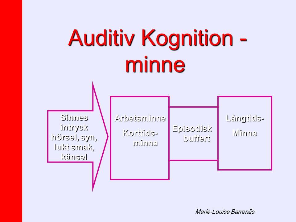 Auditiv Kognition - minne