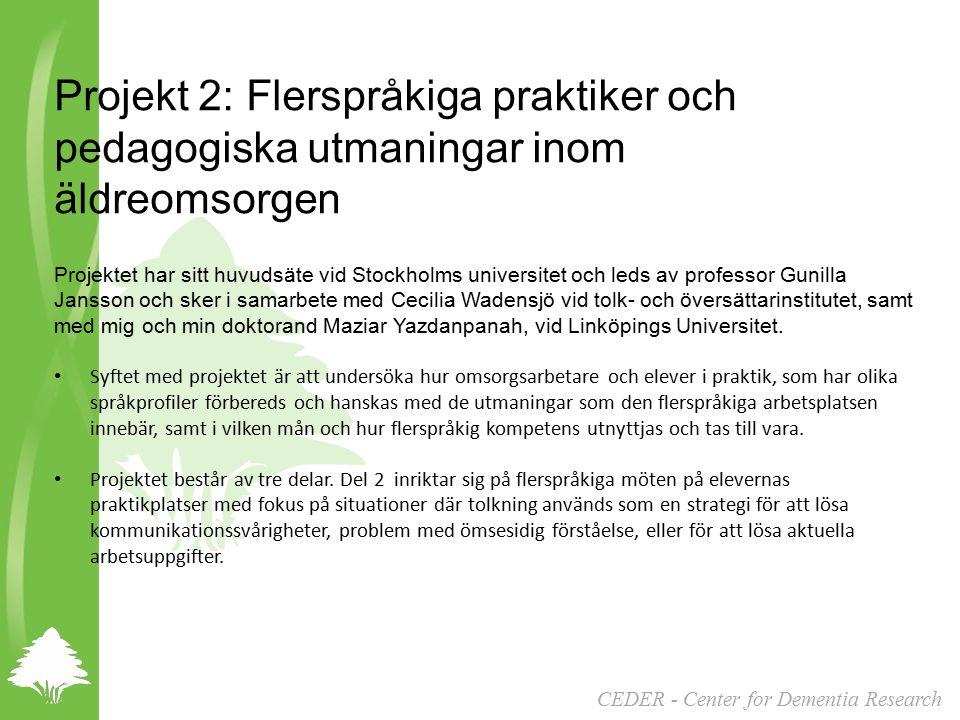 2013-04-17 Projekt 2: Flerspråkiga praktiker och pedagogiska utmaningar inom äldreomsorgen.